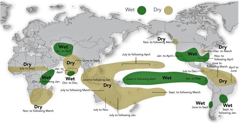 El Nino ve bıraktığı yağışın haritası. Wet- yağışlı, Dry- kurak